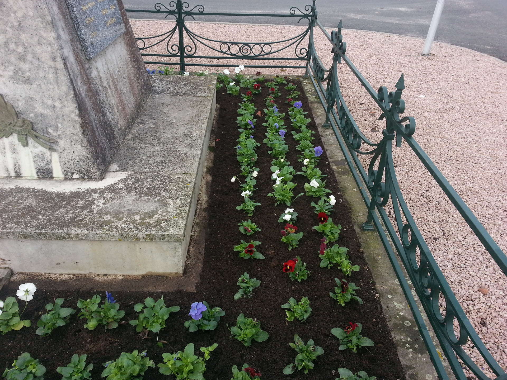 Fleurissement d'un monument aux morts pour le 11 novembre