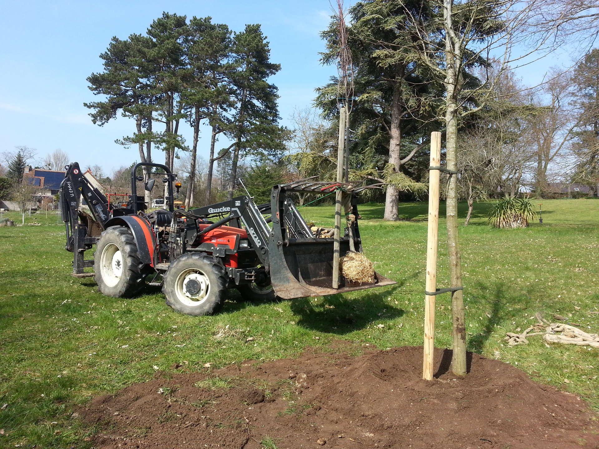 Plantation d'arbres avec la pelle rétro, pose d'un tuteur et réalisation d'une cuvette autour de l'arbre